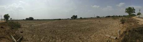 2565 sqft, Plot in Builder sark projects Rudraram, Hyderabad at Rs. 42.7500 Lacs