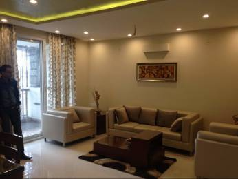 1833 sqft, 3 bhk Apartment in Cedar Luxuria Sanganer, Jaipur at Rs. 64.5000 Lacs