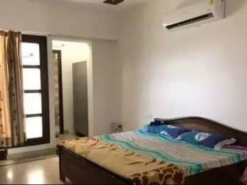 700 sqft, 1 bhk BuilderFloor in Builder Project Brs nagar, Ludhiana at Rs. 7000