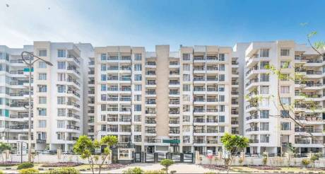 1771 sqft, 3 bhk Apartment in Builder Project Mohali Sec 117, Chandigarh at Rs. 74.4000 Lacs