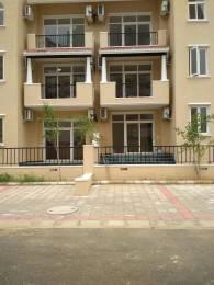 1750 sqft, 4 bhk BuilderFloor in Emaar Emerald Floors Sector 65, Gurgaon at Rs. 37000