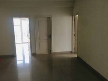 1642 sqft, 3 bhk Apartment in Dhoot Time Residency Sector 63, Gurgaon at Rs. 1.4500 Cr
