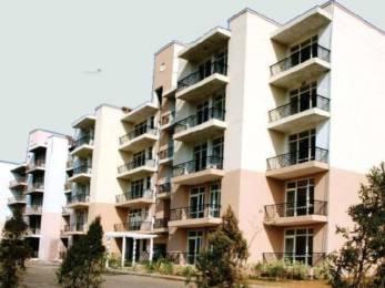 1600 sqft, 3 bhk BuilderFloor in Builder omaxe panorama city Bhiwadi Alwar Rd, Bhiwadi at Rs. 29.0000 Lacs
