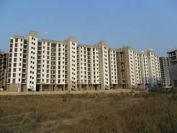 2215 sqft, 4 bhk Apartment in Builder Project Kasaar Road, Bahadurgarh at Rs. 46.8000 Lacs