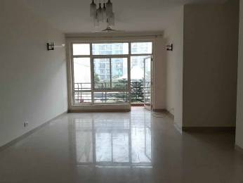 1600 sqft, 3 bhk Apartment in Omaxe Grand Sector 93B, Noida at Rs. 25500