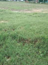 1530 sqft, Plot in TDI Connaught Residency Sector 74 A, Mohali at Rs. 58.0000 Lacs