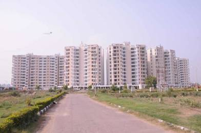1160 sqft, 2 bhk Apartment in TDI Wellington Heights Sector 117 Mohali, Mohali at Rs. 43.0000 Lacs