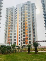 1565 sqft, 3 bhk Apartment in Hero Homes Sector 88 Mohali, Mohali at Rs. 75.1988 Lacs