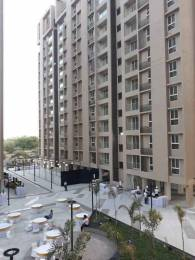 1905 sqft, 3 bhk BuilderFloor in Pacifica Reflections Near Nirma University On SG Highway, Ahmedabad at Rs. 81.0000 Lacs