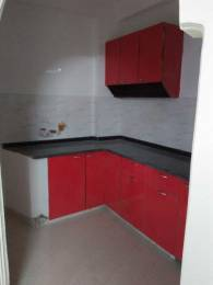 500 sqft, 1 bhk Apartment in Builder Project Saket, Delhi at Rs. 14000