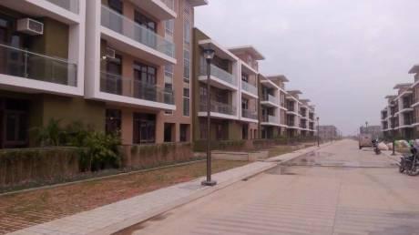 1725 sqft, 3 bhk BuilderFloor in Omaxe Cassia Floors Mullanpur, Mohali at Rs. 62.0000 Lacs