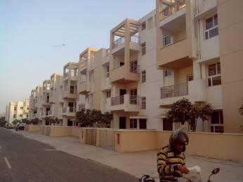 2250 sqft, 3 bhk BuilderFloor in Builder BPTP Park Elite Floors Sector 84 Faridabad Sector 84, Faridabad at Rs. 43.3500 Lacs