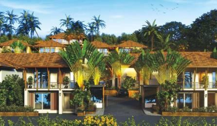 3528 sqft, 4 bhk Villa in Builder 4 BR Resort Style Independent Villas North Goa Nerul, Goa at Rs. 4.2300 Cr