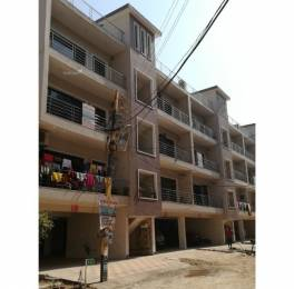 1475 sqft, 3 bhk BuilderFloor in Builder motia city Zirakpur, Mohali at Rs. 36.9000 Lacs