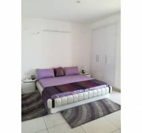 1460 sqft, 3 bhk Apartment in Motia Royal Citi Apartments Gazipur, Zirakpur at Rs. 50.0000 Lacs