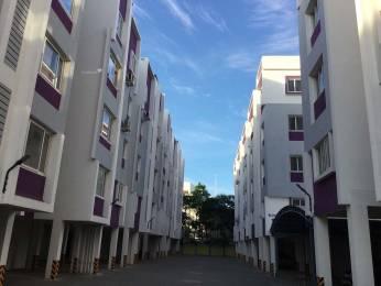 1312 sqft, 3 bhk Apartment in BECC Alpha Lotus Towers Avadi, Chennai at Rs. 57.7280 Lacs