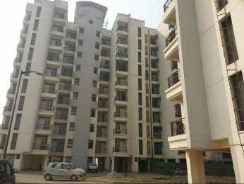 1570 sqft, 3 bhk Apartment in Parsvnath Regalia II Phase Raj Bagh, Ghaziabad at Rs. 66.0000 Lacs