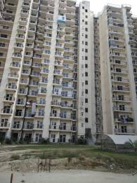 950 sqft, 2 bhk Apartment in Gardenia Golf City Sector 75, Noida at Rs. 45.0000 Lacs