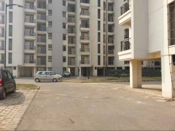 1690 sqft, 3 bhk Apartment in Parsvnath Regalia II Phase Raj Bagh, Ghaziabad at Rs. 65.0000 Lacs