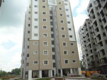 1262 sqft, 3 bhk Apartment in Builder Project Kandigai, Chennai at Rs. 36.4718 Lacs