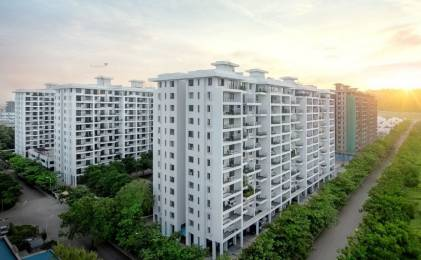900 sqft, 2 bhk Apartment in Kolte Patil Ivy Estate Nia Wagholi, Pune at Rs. 35.0000 Lacs