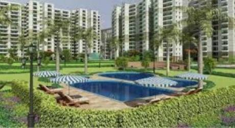 1193 sqft, 2 bhk Apartment in Stellar Stellar Jeevan Achheja, Greater Noida at Rs. 8500