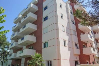 1310 sqft, 3 bhk Apartment in Builder Aashayana pro Kokar, Ranchi at Rs. 10000