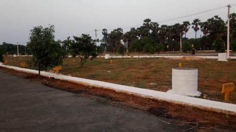 1350 sqft, Plot in Builder Srinivasa Nagar Rayudupakalu Road, Rajahmundry at Rs. 11.2500 Lacs