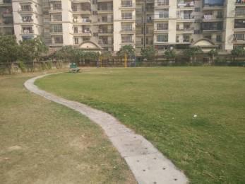 1717 sqft, 3 bhk Apartment in Builder Project Indirapuram, Ghaziabad at Rs. 20000