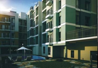 1003 sqft, 3 bhk Apartment in Builder circus cove E M Bypass, Kolkata at Rs. 45.1350 Lacs