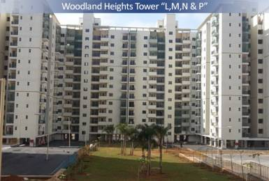 1500 sqft, 3 bhk Apartment in DLF Maiden Heights at My Town Jigani, Bangalore at Rs. 18000