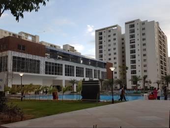 1870 sqft, 3 bhk Apartment in Adarsh Palm Retreat Bellandur, Bangalore at Rs. 1.7500 Cr