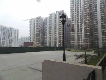 1700 sqft, 3 bhk Apartment in Panchsheel Wellington Crossing Republik, Ghaziabad at Rs. 65.0000 Lacs