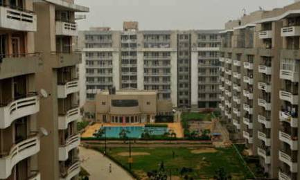1600 sqft, 3 bhk Apartment in SVP Gulmohur Greens Rajendra Nagar, Ghaziabad at Rs. 13000