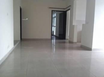 1255 sqft, 2 bhk Apartment in SVP Builders India SVP Gulmohar Residency Indirapuram, Ghaziabad at Rs. 54.5000 Lacs