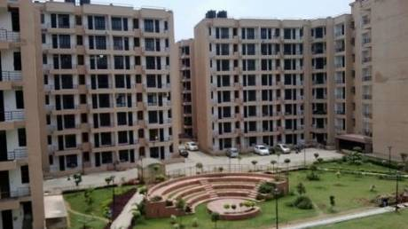 1747 sqft, 3 bhk Apartment in Jaipuria Sunrise Greens VIP Rd, Zirakpur at Rs. 49.8000 Lacs