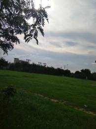 4306 sqft, Plot in Builder Project Erumely Nerchappara Road, Kottayam at Rs. 15.0000 Lacs