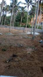 20000 sqft, Plot in Builder Project Pothencode, Trivandrum at Rs. 37.0000 Lacs