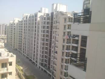 1960 sqft, 3 bhk Apartment in SBP Southcity VIP Rd, Zirakpur at Rs. 50.5000 Lacs