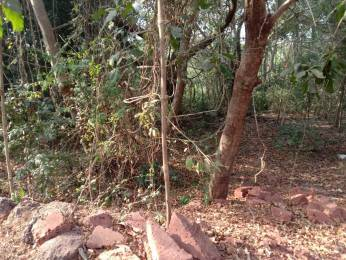 13454.875 sqft, Plot in Builder Project Assagao, Goa at Rs. 3.5000 Cr