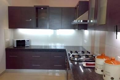 1460 sqft, 3 bhk Apartment in Maya Maya Garden Phase II VIP Rd, Zirakpur at Rs. 42.5000 Lacs