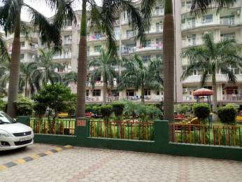 1850 sqft, 3 bhk Apartment in Builder Trishla Plus Home Peer Muchalla, Zirakpur at Rs. 49.0000 Lacs