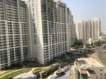 2662 sqft, 3 bhk Apartment in DLF The Crest Sector 54, Gurgaon at Rs. 4.7500 Cr