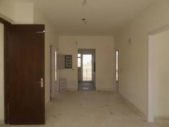 1600 sqft, 3 bhk BuilderFloor in BPTP Pedestal Sector 70A, Gurgaon at Rs. 84.0000 Lacs
