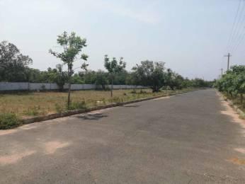 1800 sqft, Plot in Builder Project Gajularega, Vizianagaram at Rs. 17.0000 Lacs