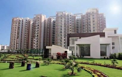 1910 sqft, 3 bhk Apartment in Motia Royal Citi Apartments Gazipur, Zirakpur at Rs. 65.3500 Lacs