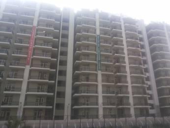 1276 sqft, 2 bhk Apartment in Builder sushma green vista Old Ambala Roadm Zirakpur, Chandigarh at Rs. 40.2500 Lacs