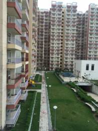 1015 sqft, 2 bhk Apartment in KLJ Platinum Heights Sector 77, Faridabad at Rs. 30.7500 Lacs
