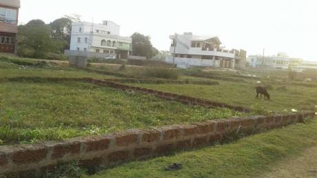 1976 sqft, Plot in Builder ssd Lingipur, Bhubaneswar at Rs. 35.3200 Lacs