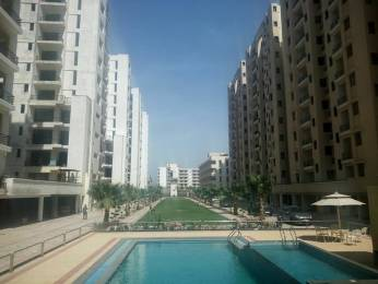 1737 sqft, 3 bhk Apartment in Builder Project Sector 115 Mohali, Mohali at Rs. 47.7220 Lacs